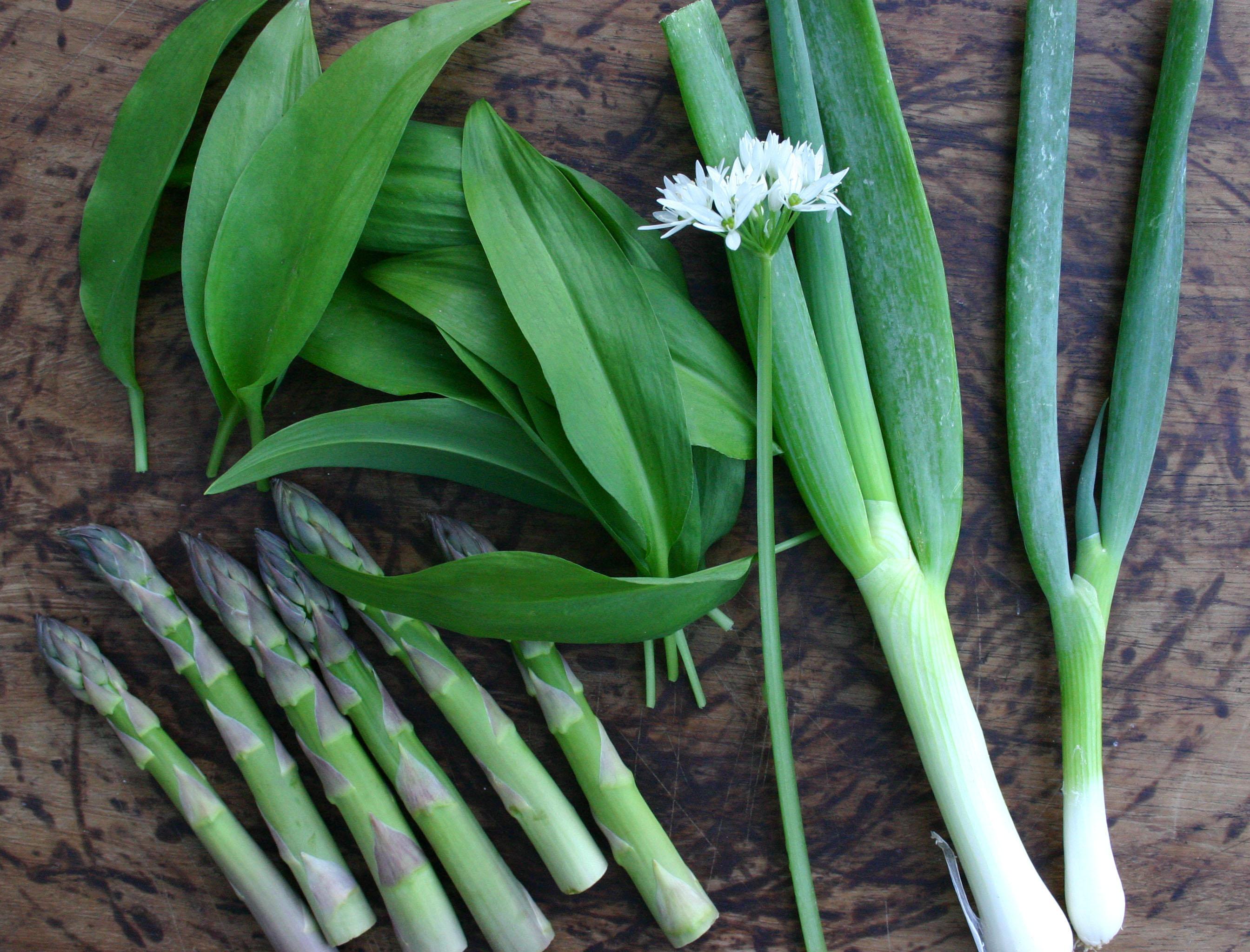 Green Garlic & Spring Onion Pesto Recipes — Dishmaps